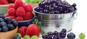 Купить ягоду в красноярске