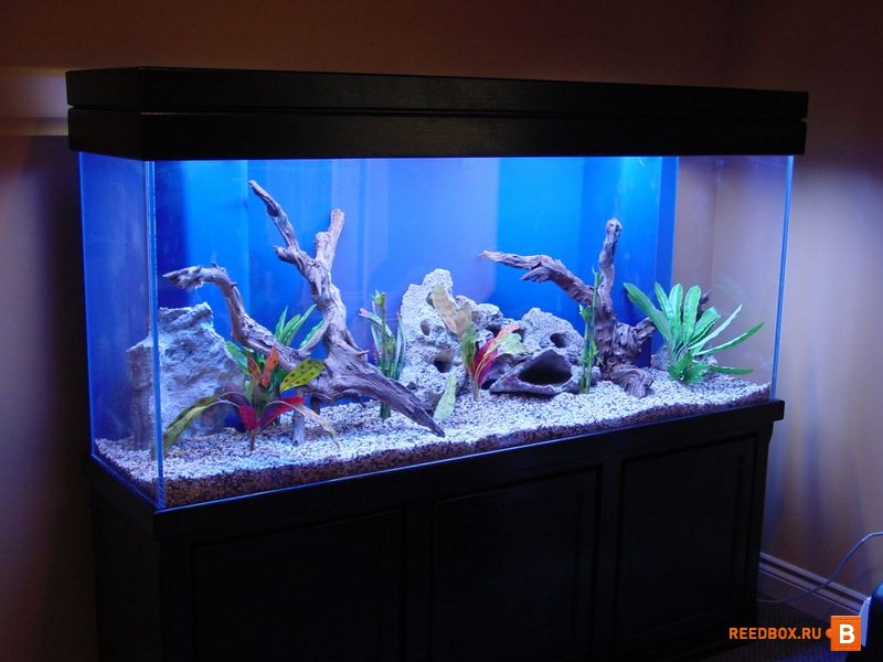 Купить аквариум не дорого