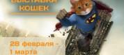 выставка кошек красноярск