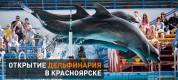 дельфинарий в Красноярске 2014