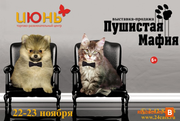 выставка животных в красноярске