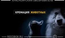 Кремация животного